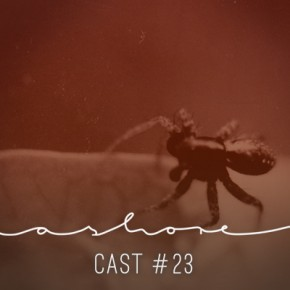 Ashorecast #23 - Weevil Neighbourhood